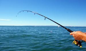 pecanje 5