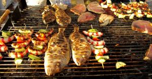 fish picnic 3